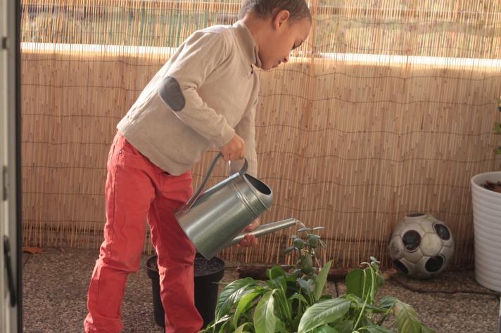 jardinage sur le balcon avec les enfants