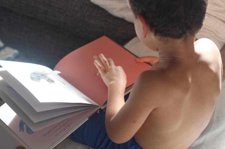 appretissage lecture livre montessori lettre