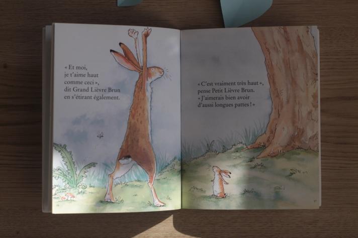 livre enfant jeunesse devine combien je t'aime
